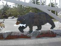 close up of the bear, fish and authentic rocks